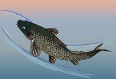 Japanese fish stock illustration