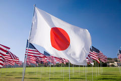 Japanese flag among the 3000 Royalty Free Stock Images