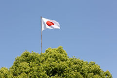 Japanese flag Royalty Free Stock Photo
