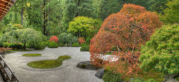 Japanese Flat Garden in the Fall Stock Images
