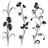Japanese floral design series Stock Image