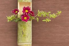 Japanese flower arrangement in bamboo Royalty Free Stock Photography