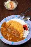 Japanese food fry pork curry Stock Images