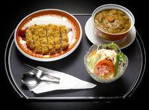 Japanese food fry pork curry. With vegetable salad Royalty Free Stock Photo