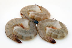 Japanese food - Gourmet raw sushi king tiger prawns. Japanese food,  raw gourmet sushi, tiger king prawns isolated on white Royalty Free Stock Images