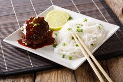 Japanese food: hamburg steak or hambagu with a spicy sauce and r Stock Image