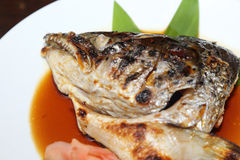 Japanese food salmon Kabutoni Stock Image