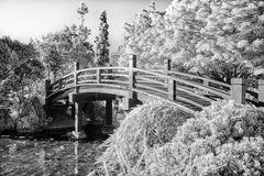 Japanese Footbridge Over Pond in Black and White Stock Image