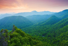 Japanese forest. View from the mountain Hakkenzan in Hokkaido Stock Photography