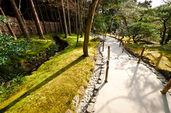 Japanese forest Stock Photos