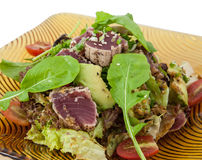 Japanese fusion food. Original Japanese fusion tuna salad stock photography