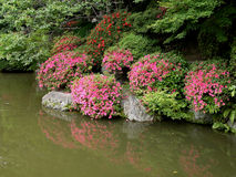 Japanese garden. A beautiful garden near Kyomizudera temple in Kyoto Stock Photo