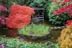 Japanese garden Stock Photography
