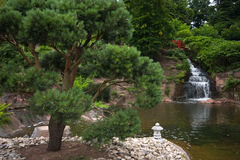 Japanese Garden. Showing a bridge and waterfall royalty free stock photo