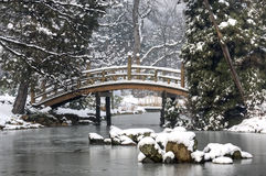 Japanese garden. In winter time Stock Images