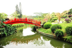 Japanese garden. Pond and red bridge in japanese garden Royalty Free Stock Photography