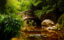 Japanese garden. A bridge over water in a Japanese garden in Austin, Texas. wallpaper