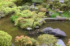 Japanese garden Royalty Free Stock Photography