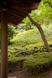 Japanese Garden 3 Royalty Free Stock Image