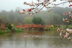 Free Japanese Garden Royalty Free Stock Image - 31755256
