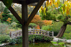 Japanese Garden. A Japanese Garden shot from inside a gazebo stock photography