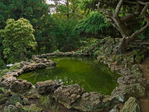 Japanese Garden. An ornamental Japanese style garden with lava rocks and a picturesque pond Royalty Free Stock Photos