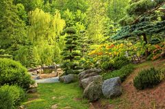 Japanese Garden 5. Mysterious trip on japanese garden royalty free stock image
