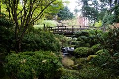Japanese Garden. In early spring Stock Photography