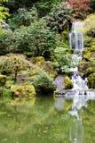 Japanese Garden. In early spring stock photos