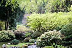 Japanese Garden. In early spring Royalty Free Stock Photo