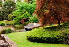 Japanese Garden 7 Stock Photography