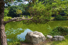 The Japanese garden. In the Chinese park, Shenzhen Stock Images