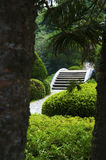 The Japanese garden. In the Chinese park, Shenzhen Stock Photos