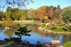 Japanese Garden. Lake in a Japanese garden Royalty Free Stock Photography