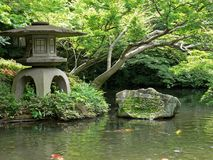 Japanese garden. With koi carps in a pond and a stone lantern at the bank royalty free stock image