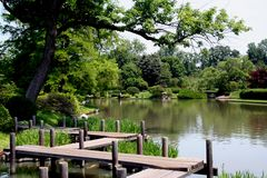Japanese Garden. Bridge in Japanese Garden Royalty Free Stock Photos
