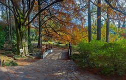 Japanese Garden in the Arboretumin. Sochi. Russia Stock Photography