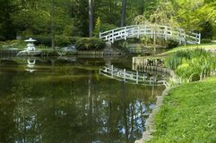 Japanese garden arched bridge Stock Photography