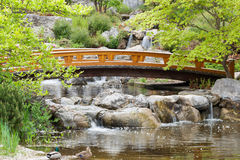 Japanese garden. With arched bridge and waterfall Stock Photo