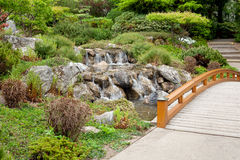 Japanese garden. With arched bridge and waterfall Royalty Free Stock Photography