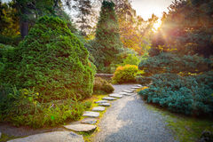 Japanese garden in autumn Stock Image