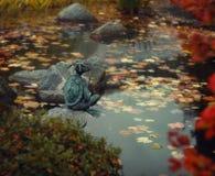 Japanese garden in the autumn royalty free stock photos