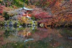 Japanese garden in autumn season Royalty Free Stock Image