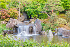 Japanese garden beautiful in nature with little waterfall. Stock Photography