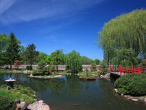 Japanese garden in Bloomington with pond Royalty Free Stock Image