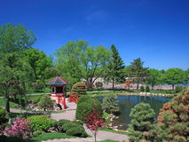 Japanese garden in Bloomington with trees Stock Images