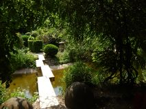 Japanese Garden in Botanical Garden, Cluj Napoca. Beautiful Japanese Garden in a hot summer day - Botanical Garden, Cluj Napoca, Romania. The chinese bridge over Royalty Free Stock Image