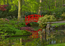 Japanese garden with bridge Stock Photos