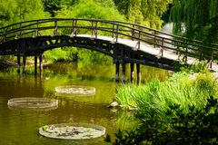 Japanese Garden Bridge Royalty Free Stock Photography