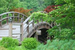 Japanese Garden Bridge. Japanese Garden taken at the St. Louis Arboretum Royalty Free Stock Photo